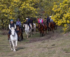 Burnelee Excursions on Horseback - Attractions Brisbane