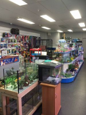 Nambour Pet Shop - Attractions Brisbane