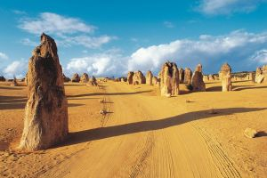 Pinnacles Desert Koalas and Sandboarding 4WD Day Tour from Perth - Attractions Brisbane